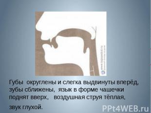 Губы округлены и слегка выдвинуты вперёд, зубы сближены, язык в форме чашечки по