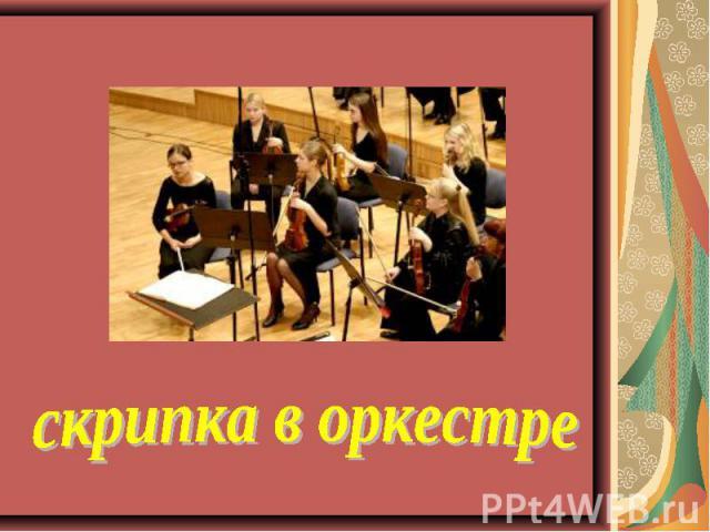 скрипка в оркестре
