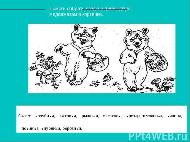 Помоги собрать ягоды и грибы двум медвежатам в корзинки. Слова: .олуби.а, ежеви.а, рыжи.и, маслено., .рузди, земляни.а, .алина, по.ан.а, .лубни.а, борови.и.