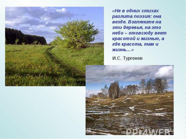 «Не в одних стихах разлита поэзия: она везде. Взгляните на эти деревья, на это небо – отовсюду веет красотой и жизнью, а где красота, там и жизнь…» И.С. Тургенев