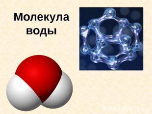 Молекулаводы