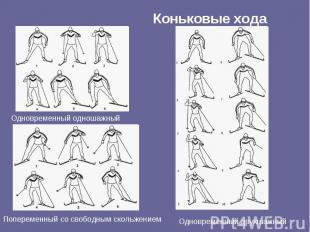 Коньковые хода Одновременный одношажный Попеременный со свободным скольжением Од