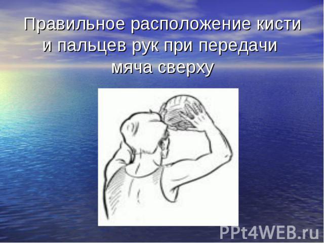 Правильное расположение кисти и пальцев рук при передачи мяча сверху