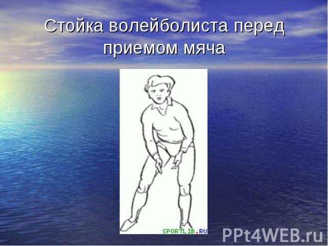 Стойка волейболиста перед приемом мяча