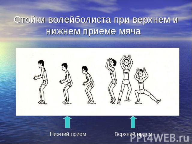 Стойки волейболиста при верхнем и нижнем приеме мяча