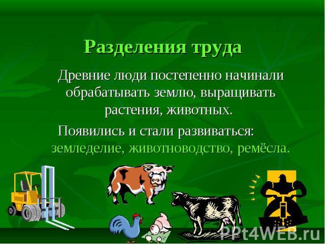 Древние люди постепенно начинали обрабатывать землю, выращивать растения, животных. Появились и стали развиваться: земледелие, животноводство, ремёсла.