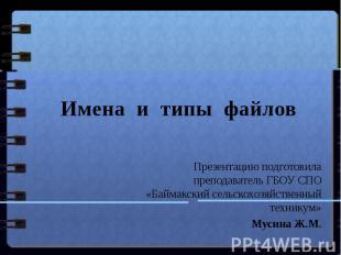 Имена и типы файлов Презентацию подготовила преподаватель ГБОУ СПО «Баймакский с