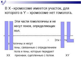 В Х –хромосоме имеется участок, для которого в Y – хромосоме нет гомолога. Эти ч