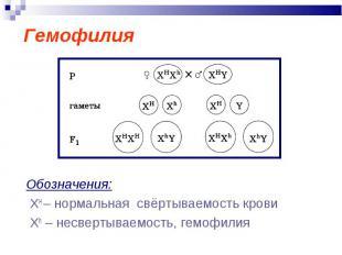 Гемофилия Обозначения: ХН – нормальная свёртываемость крови Xh – несвертываемост