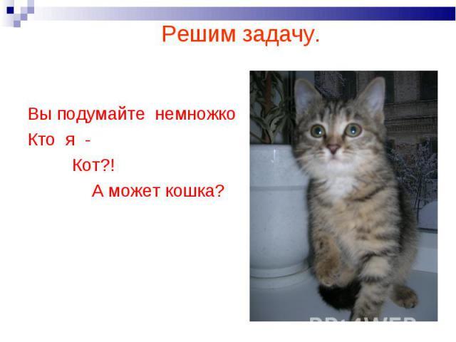 Решим задачу. Вы подумайте немножкоКто я - Кот?! А может кошка?