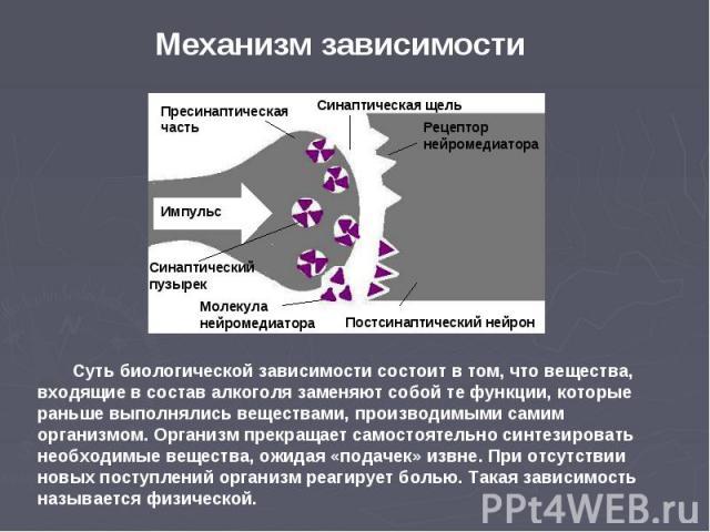 Механизм зависимости Суть биологической зависимости состоит в том, что вещества, входящие в состав алкоголя заменяют собой те функции, которые раньше выполнялись веществами, производимыми самим организмом. Организм прекращает самостоятельно синтезир…