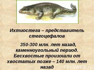 Ихтиостега – представитель стегоцефалов 350-300 млн. лет назад, каменноугольный