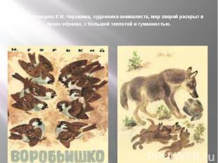 В иллюстрациях Е И. Чарушина, художника-анималиста, мир зверей раскрыт в ярких о