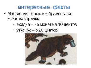 интересные факты Многие животные изображены на монетах страны: ехидна – на монет
