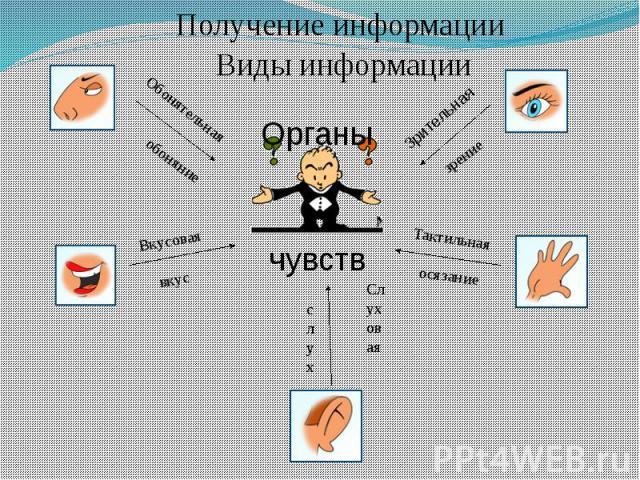 Получение информации Виды информации
