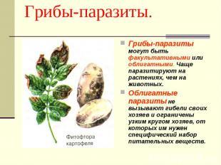Грибы-паразиты. Грибы-паразиты могут быть факультативными или облигатными. Чаще