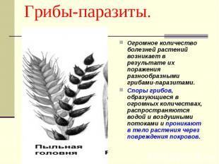 Грибы-паразиты. Огромное количество болезней растений возникает в результате их