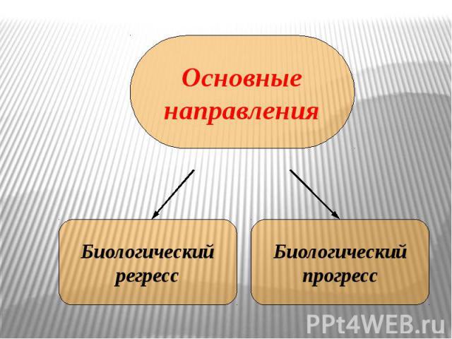 Основныенаправления Биологическийрегресс Биологическийпрогресс