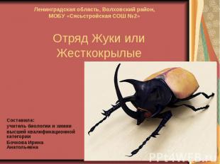 Отряд Жуки или ЖесткокрылыеСоставила:учитель биологии и химиивысшей квалификацио