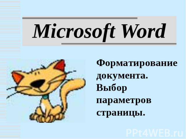Microsoft Word. Форматирование документа. Выбор параметров страницы