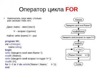 Оператор цикла FORНапечатать свое имя, столько раз сколько тебе лет. program NK;