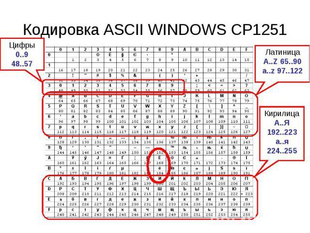 Кодировка ASCII WINDOWS CP1251 Цифры0..948..57 ЛатиницаA..Z 65..90a..z 97..122 КирилицаА..Я 192..223а..я224..255