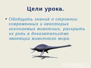 Цели урока.Обобщить знания о строении современных и некоторых ископаемых животны