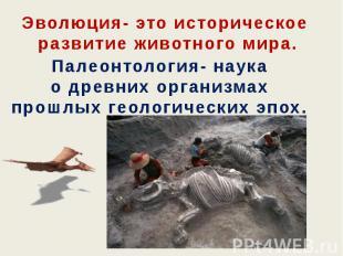 Эволюция- это историческое развитие животного мира. Палеонтология- наука о древн