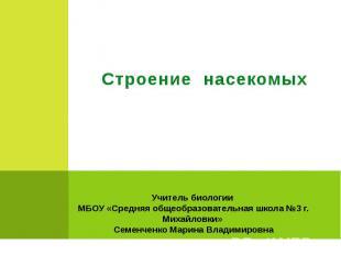 Строение насекомых Учитель биологии МБОУ «Средняя общеобразовательная школа №3 г
