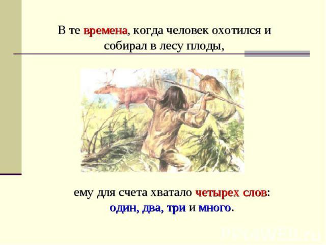 В те времена, когда человек охотился и собирал в лесу плоды, ему для счета хватало четырех слов: один, два, три и много.