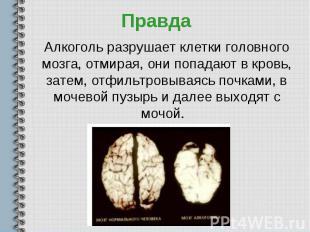 Алкоголь разрушает клетки головного мозга, отмирая, они попадают в кровь, затем,