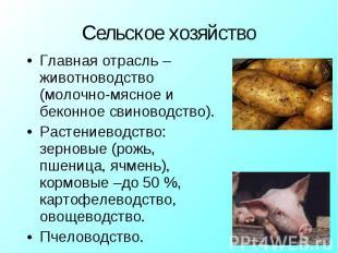 Главная отрасль – животноводство (молочно-мясное и беконное свиноводство).Растен