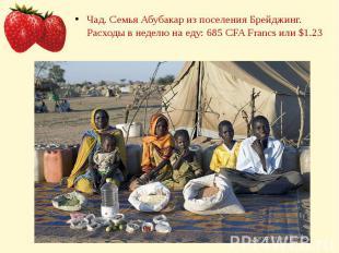 Чад. Семья Абубакар из поселения Брейджинг. Расходы в неделю на еду: 685 CFA Fra