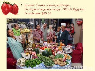 Египет. Семья Ахмед из Каира.Расходы в неделю на еду: 387.85 Egyptian Pounds или