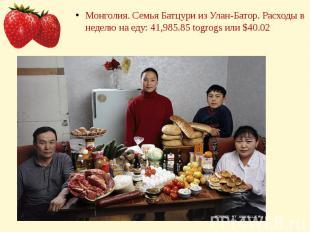 Монголия. Семья Батцури из Улан-Батор. Расходы в неделю на еду: 41,985.85 togrog