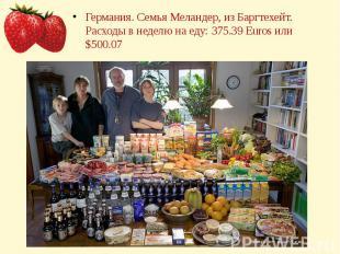 Германия. Семья Меландер, из Баргтехейт.Расходы в неделю на еду: 375.39 Euros ил