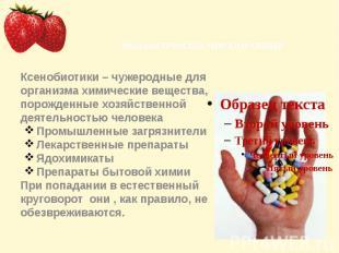 Ксенобиотики – чужеродные для организма химические вещества, порожденные хозяйст