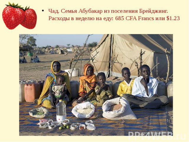 Чад. Семья Абубакар из поселения Брейджинг. Расходы в неделю на еду: 685 CFA Francs или $1.23