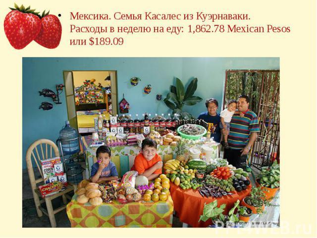 Мексика. Семья Касалес из Куэрнаваки.Расходы в неделю на еду: 1,862.78 Mexican Pesos или $189.09