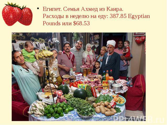 Египет. Семья Ахмед из Каира.Расходы в неделю на еду: 387.85 Egyptian Pounds или $68.53