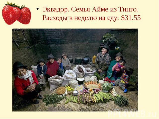 Эквадор. Семья Айме из Тинго.Расходы в неделю на еду: $31.55