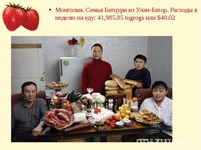Монголия. Семья Батцури из Улан-Батор. Расходы в неделю на еду: 41,985.85 togrogs или $40.02