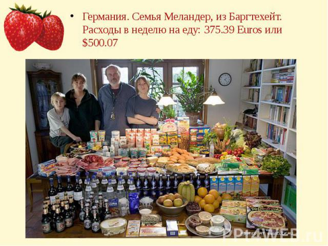 Германия. Семья Меландер, из Баргтехейт.Расходы в неделю на еду: 375.39 Euros или $500.07