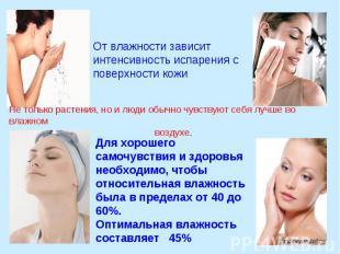 От влажности зависит интенсивность испарения с поверхности кожи Не только растен