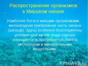 Распространение организмов в Мировом океане Наиболее богата живыми организмами м