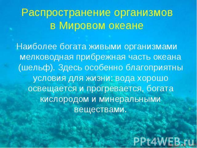 Распространение организмов в Мировом океане Наиболее богата живыми организмами мелководная прибрежная часть океана (шельф). Здесь особенно благоприятны условия для жизни: вода хорошо освещается и прогревается, богата кислородом и минеральными веществами.