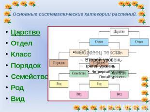 Основные систематические категории растений. Царство ОтделКлассПорядокСемействоР