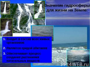 Значение гидросферы для жизни на Земле: Входит в состав всех живых организмовЯвл