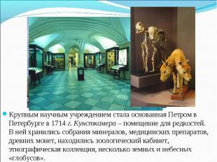 Крупным научным учреждением стала основанная Петром в Петербурге в 1714 г. Кунст