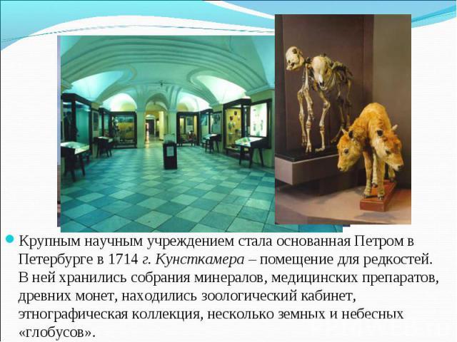 Крупным научным учреждением стала основанная Петром в Петербурге в 1714 г. Кунсткамера – помещение для редкостей. В ней хранились собрания минералов, медицинских препаратов, древних монет, находились зоологический кабинет, этнографическая коллекция,…